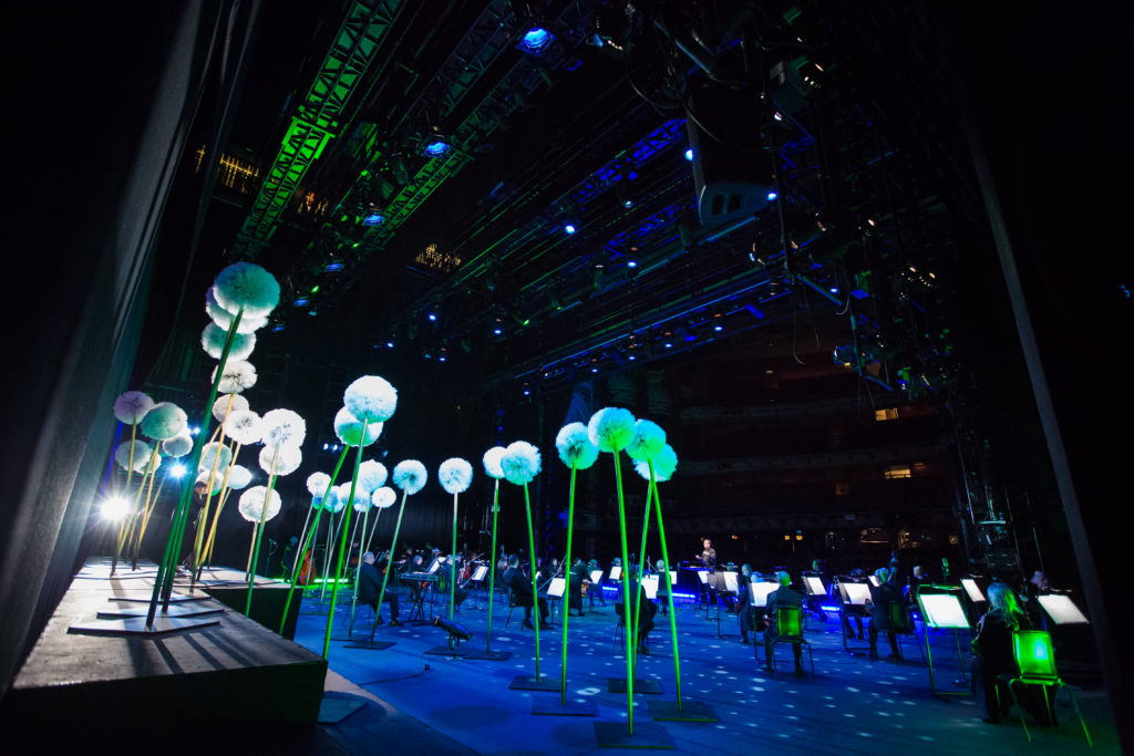 View of big flowers and a stage in a blue and green light